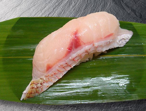 島根県浜田産 のどぐろ(赤ムツ)炙り