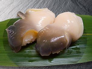 北海道産 活ホッキ貝